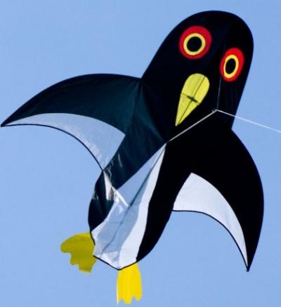 Šarkan Pingu